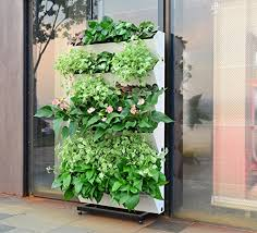 bloomwall vertical wall garden planter by savvygrow plant rack