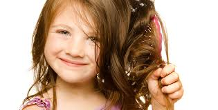senior hair cut discounts seniors kids the color bar hair salon