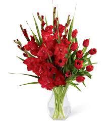 Flowers For Men - birthday flower for august u2013 gladiolus
