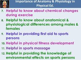 Anatomy And Physiology Chapter 9 Quiz Chapter 8 Fundamentals Of Anatomy And Physiology