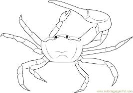 Gulf Mud Fiddler Crab Coloring Page Free Crab Coloring Pages Crab Coloring Page