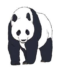 panda clipart outline pencil and in color panda clipart outline