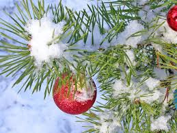 Outdoor Christmas Ornament Balls by Christmas Tree Under Snow U2014 Stock Photo S Razvodovskij 2953606