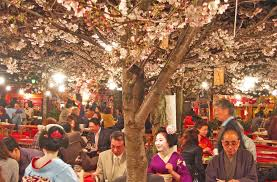 Flowers In Japanese Culture - cherry blossom japanese culture inside japan tours