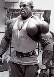 Ronnie Coleman Bench by Ronnie Coleman U0027s Training Routine Bodybuilding Forums T Nation