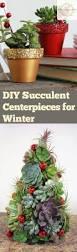 Diy Garden Crafts - diy succulent centerpieces for winter bless my weeds