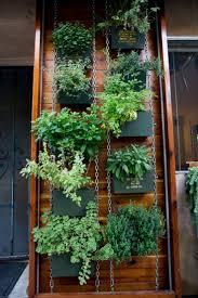 Wall Mounted Herb Garden by 296 Best Vertical Garden Images On Pinterest Vertical Gardens