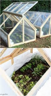 garden greenhouse ideas backyard greenhouses diy home outdoor decoration