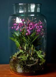 diy terrarium how to make a diy terrarium home sweet home