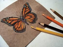 butterflies bette a stevens maine author