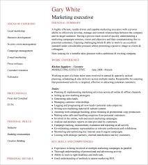download executive resume template haadyaooverbayresort com