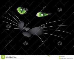 halloween cat eyes background black cat face royalty free stock images image 34338469