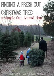 finding a fresh cut christmas tree u2013 our simple family tradition