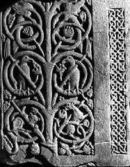 celtic tree of crann bethadh