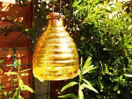 how to make a homemade bee u0026 wasp trap kill or no kill