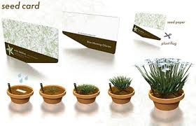 plantable paper why to switch to seed paper