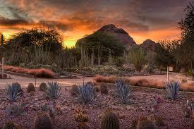 Scottsdale Botanical Gardens Desert Botanical Garden Venues Scottsdale Scottsdale