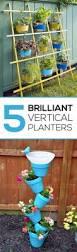 where to find the best gardening seeds garden lovin