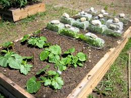 Vegetable Container Garden - diy getting dirty with square foot gardening squawkfox