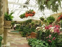 Botanic Gardens Hobart Hobart S Botanical Gardens Has The World S Only Subantarctic Plant