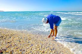Blind Pass Beach Florida Tips On How To Plan The Perfect Vacation To Sanibel Island Florida
