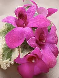 orchid wrist corsage purple dendrobium orchid wrist corsage