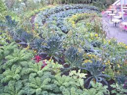 edible gardening verdant earth