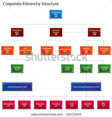 blank organizational chart hierarchy structure chart stock