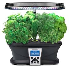 amazon black friday aerogarden 6 best hydroponic systems and supplies in 2017 hydroponic