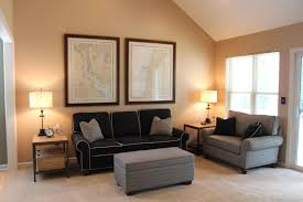 colors to paint living room with black furniture