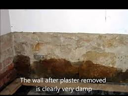 Sealant Paint For Damp Interior Walls Rising Damp Causes And Cure Youtube