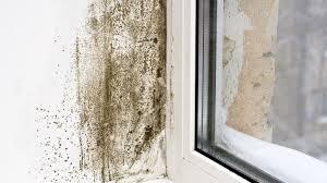 mietminderung bei schimmel im schlafzimmer schimmel kann ich auf die mietzinsreduktion bestehen sendungen
