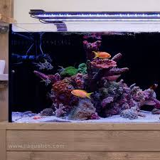 current usa orbit marine aquarium led light current usa orbit marine led light fixture 36 48 inch j l