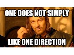 One Direction Memes - one direction story of my life funny one direction memes