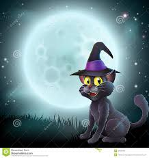 Halloween Full Moon Witch Cat Royalty Free Stock Photo Image