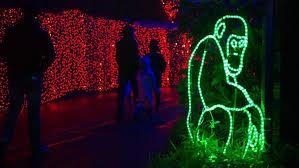 zoo lights portland oregon zoolights set to return nov 24 with more than 1 6 million lights katu