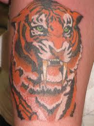 tribal sabertooth pictures sabertooth tiger
