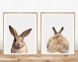 rabbit prints rabbit wall nursery wall rabbit print nursery