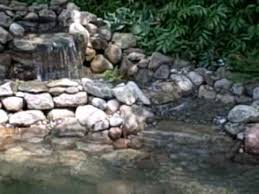 How To Make A Koi Pond In Your Backyard How To Enlarge A Koi Pond