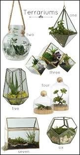the 25 best terrarium containers ideas on pinterest glass