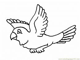 parrots coloring pages parrots are flying coloring page free parrots coloring pages