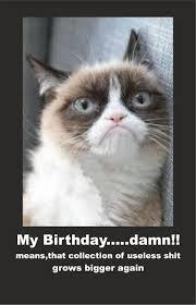 grumpy cat birthday card alanarasbach com