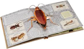 bugs a stunning pop up look at insects spiders and other creepy