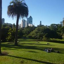 City Botanic Gardens Brisbane Mt Coot Tha Botanic Gardens 82 Photos 24 Reviews