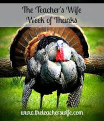 16 best thanksgiving images on