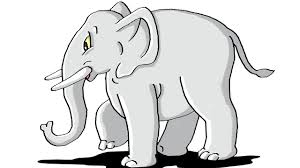 how to draw elephant step by step for kids youtube