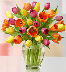 Mothers Day Flowers A Guide To Sending Mother U0027s Day Flowers Online