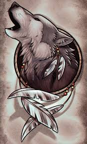 drawing a wolf dreamcatcher by drawing guide by
