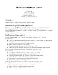 manager resume objective exles marketing resume objective exles megakravmaga