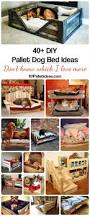 Dog Bunk Beds Furniture by 40 Diy Pallet Dog Bed Ideas Don U0027t Know Which I Love More